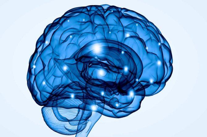 Nowy specjalista – Neurolog