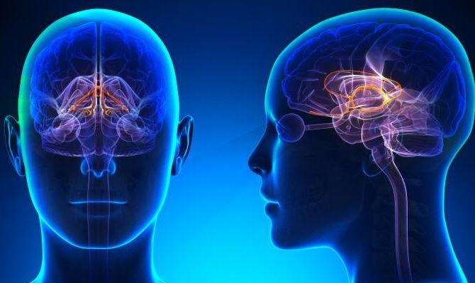 Poradnia Neurologiczna – Kolejny Specjalista